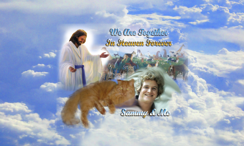 Picture of my cat and me in Heaven